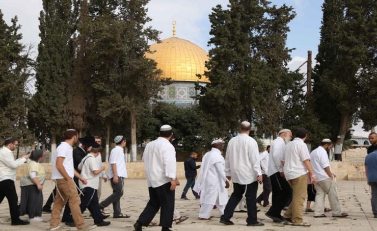 عشرات المستوطنين يقتحمون المسجد الأقصى وينفذون جولات استفزازية